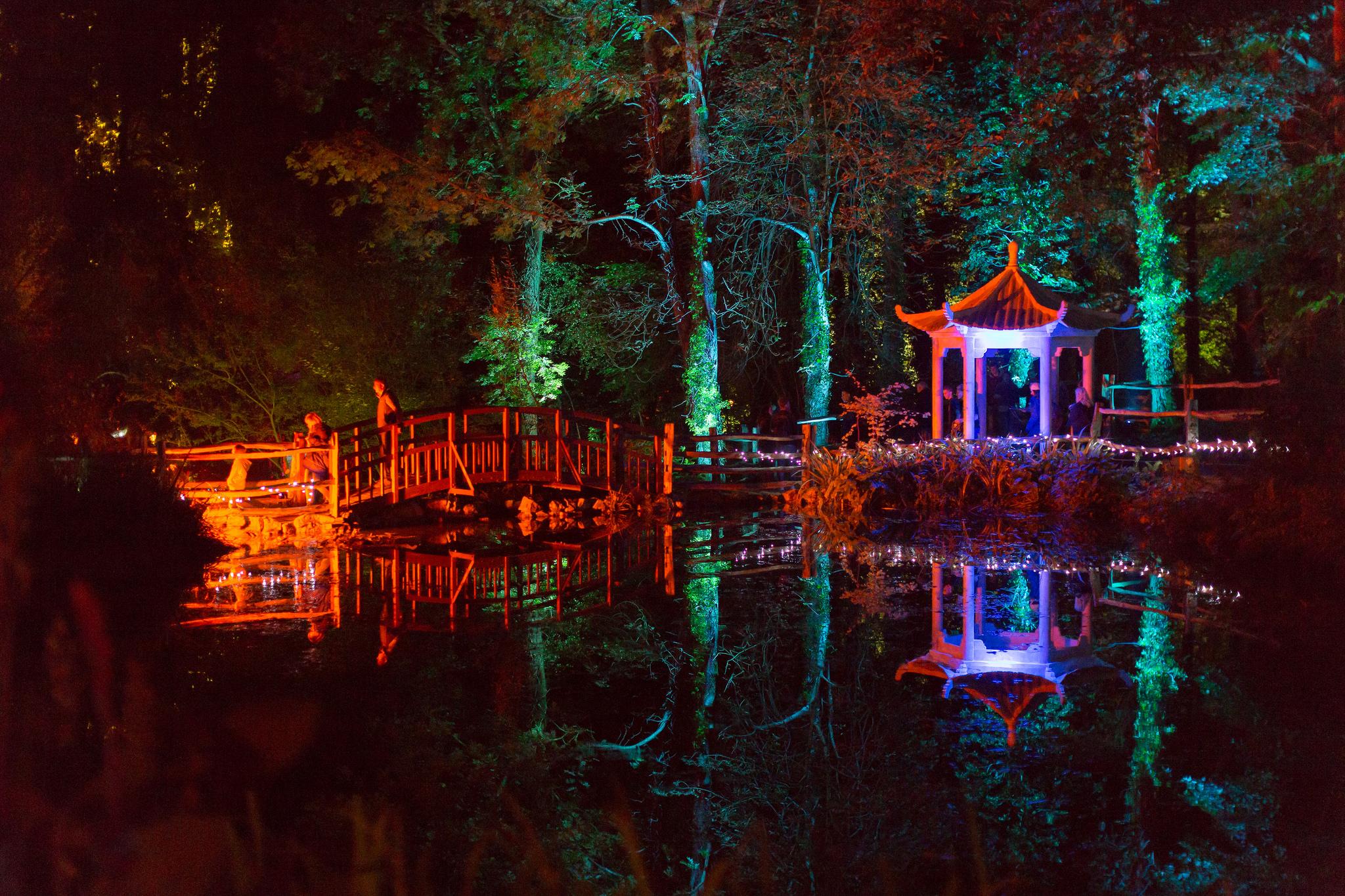 Festival of light at Robin Hill