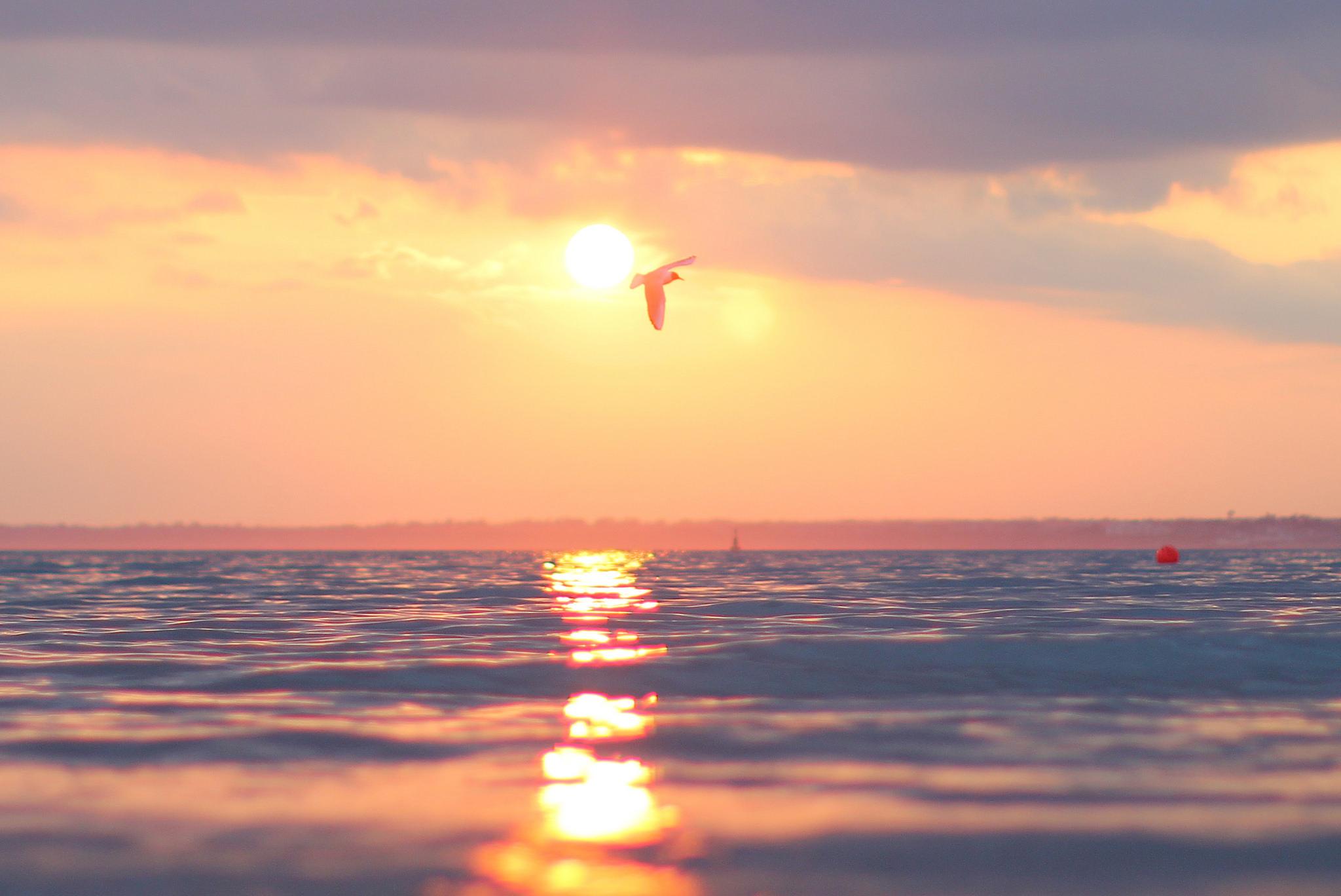 Best place for an Island Sundowner