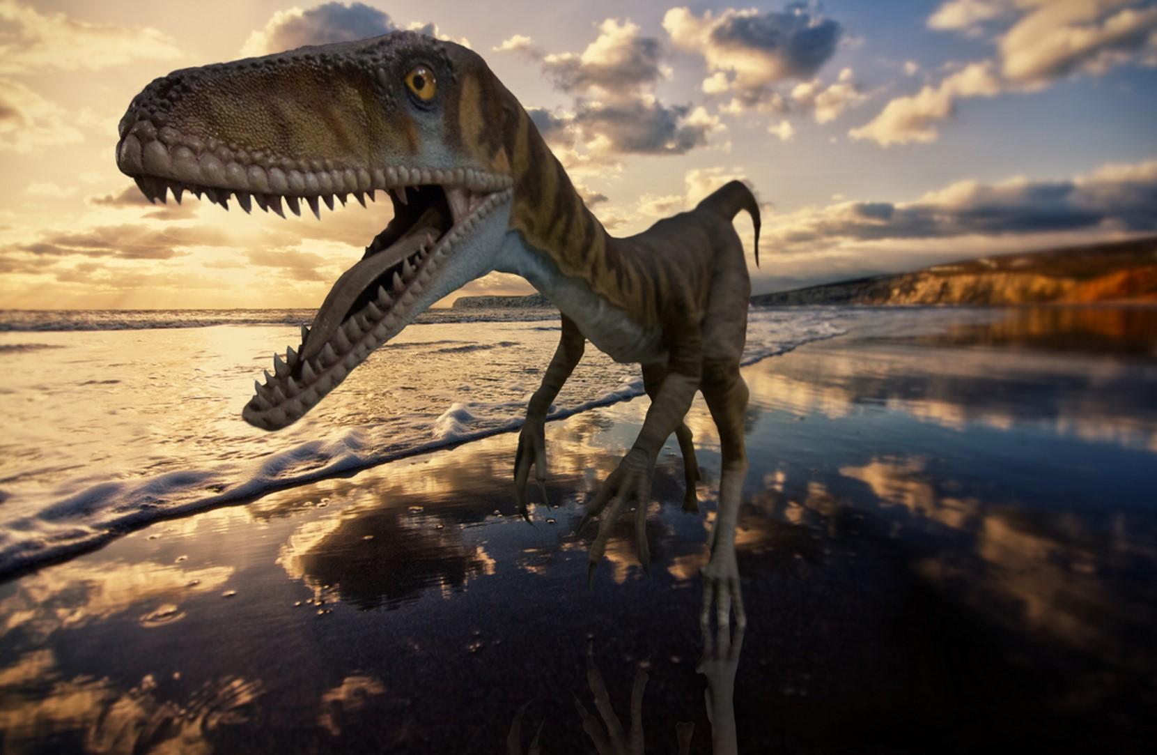 Dinosaur Isle, Sandown